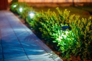 Offertes voor tuin aanleggen
